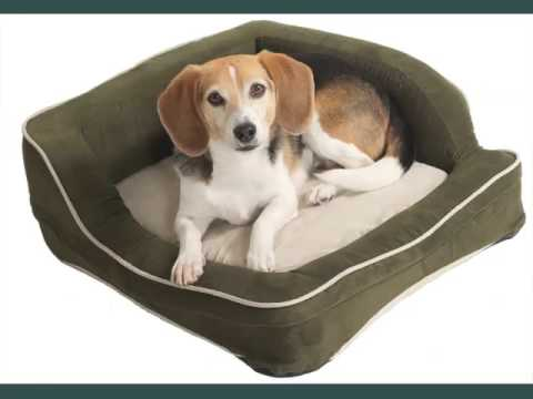 set-of-useful-picture-ideas-of-dog-beds-|-dog-beds
