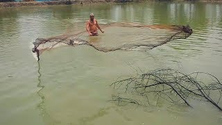 Net Fishing || Traditional cast net fishing  || Live Fish Hunting In village || Fishing Mania
