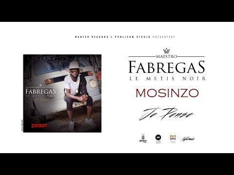 Fabregas Le Metis Noir - Mosinzo