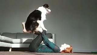 Dog Balancing Act