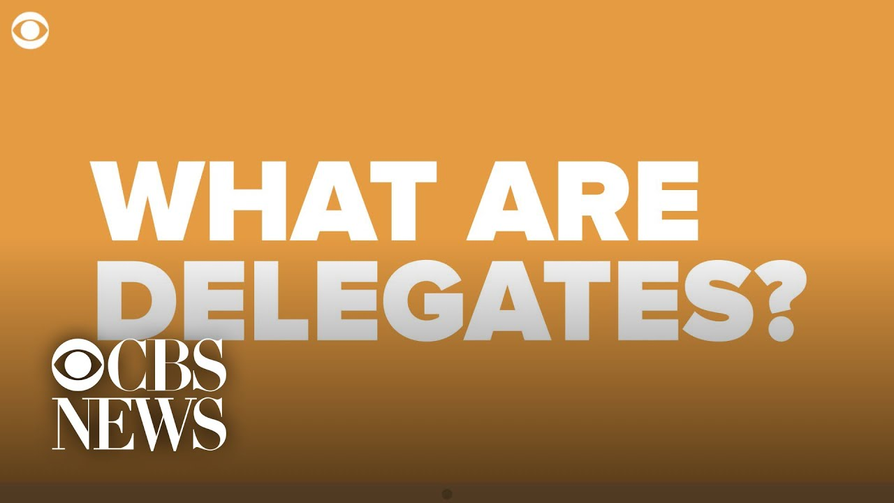 The Democratic delegate process explained, in one minute