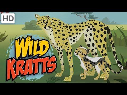 🐆 Wild Kratts - Meet