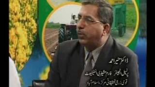 Rabi Crops -Farm mechanization Pakistan Dr.Ashraf Sahibzadav