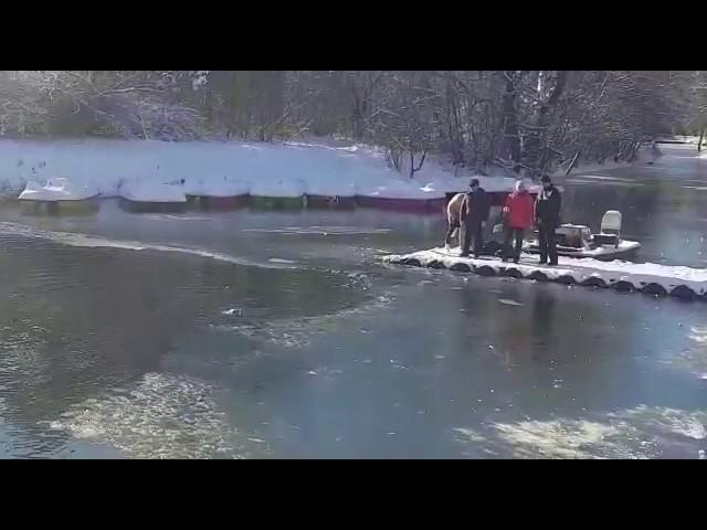 Бестрашен маж скока во замрзнато езеро за да спаси куче