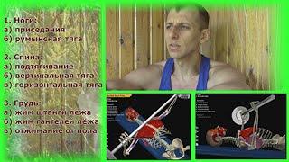 Как работают наши мышцы 3(сайт - http://fitnes-liders.ru/ Видео материал будет полезен для начала занятий в тренажерном зале. Как работают наши..., 2015-07-12T12:04:27.000Z)