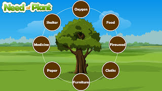 """plants are very useful for us"" learn by video"