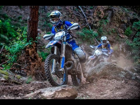 Erzbergrodeo champion Graham Jarvis overcomes painful defeat