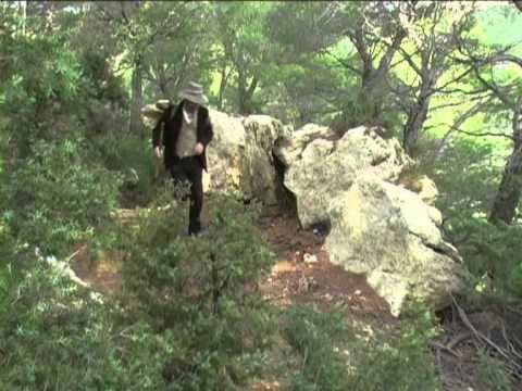 Provence Plus TV - interlude