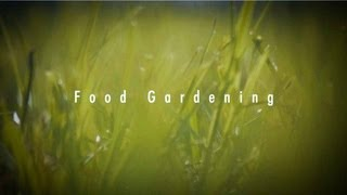 Food Gardening in South Africa