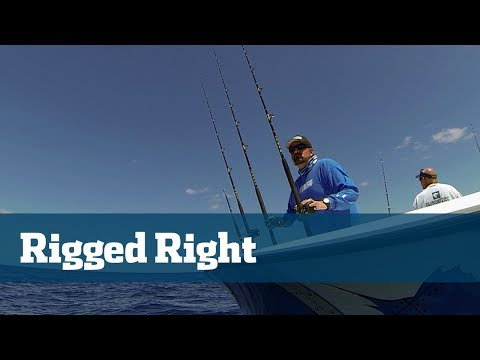 Fishing Rigs; How To Tie The Best Rigs For Offshore Fishing In Florida