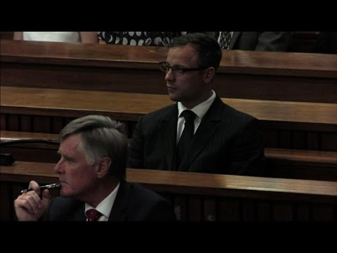Defence witness claims Pistorius too vulnerable for prison