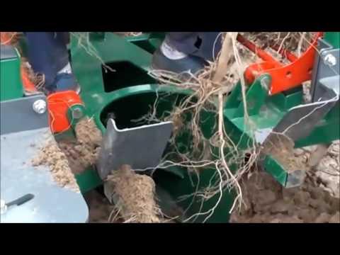 planteuse pépinière Roussel Agri