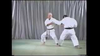Tatsuo Suzuki - Pinan Nidan (平安二段)