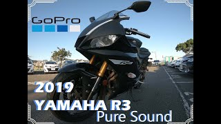 2019 YAMAHA R3 │ GOPRO HERO 6 │ Walkround │Pure Sound