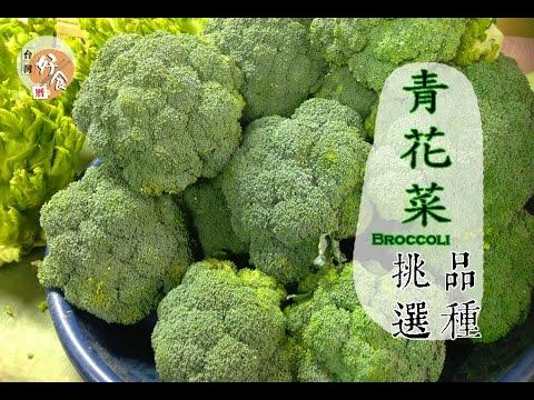 【春】綠花椰菜的挑選方法