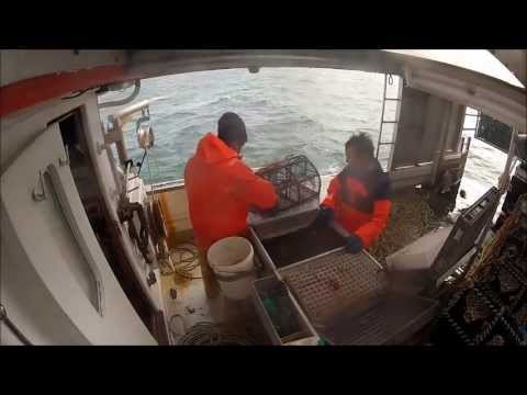 prawn fishing creels at its best