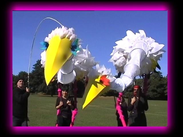 Big storks
