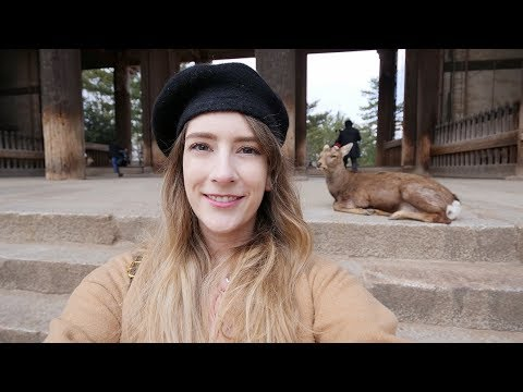 Nara Park in Japan! Feeding the deer in Nara ♡