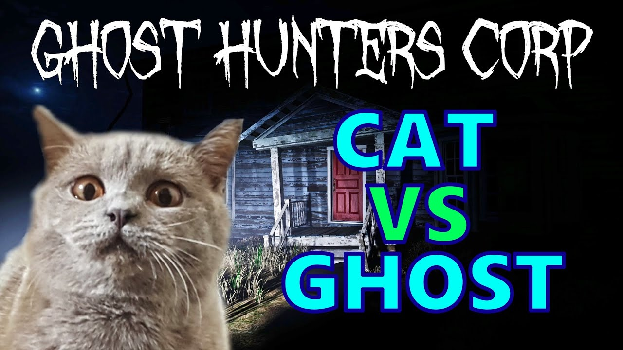 My cat exorcised a Demon | Ghost Hunters Corp