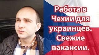 Робота в Чехії для українців. Свіжі вакансії.