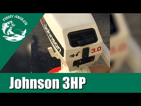 1993 Johnson 3HP Outboard After Maintenance