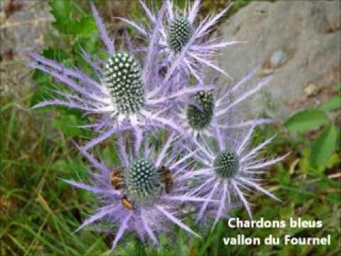 Saint-Crépin / Sant-Crespin - Hautes-Alpes