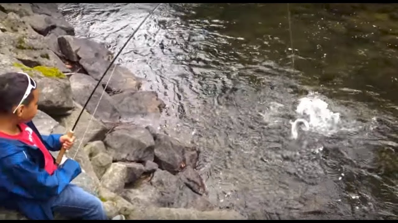 Fly fishin 39 pink salmon campbell river bc youtube for Campbell river fishing