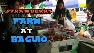 (NO EDIT) STRAWBERRY FARM | BAGUIO ESCAPADE | LATE UPLOAD