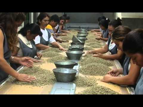 Caffé di El Salvador