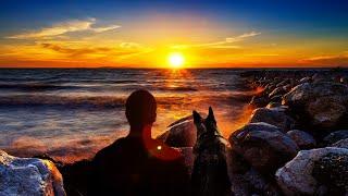 Stranger On The Shore ~ Acker Bilk [HD]