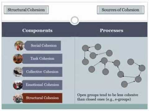 Group Dynamics 5a Cohesion Sources