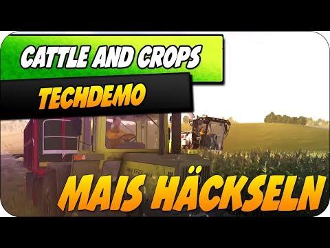 MAIS HÄCKSELN mit CLAAS! | Techdemo | Cattle and Crops | Karvon