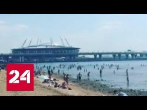 """""""Погода 24"""": в Европейской России усиливается жара - Россия 24"""