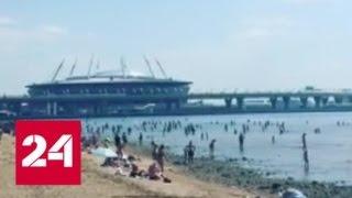 """Смотреть видео """"Погода 24"""": в Европейской России усиливается жара - Россия 24 онлайн"""