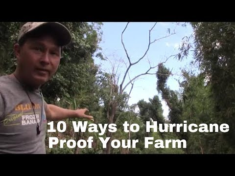 10 Ways A Farm In Puerto Rico Is Making Itself Hurricane Proof