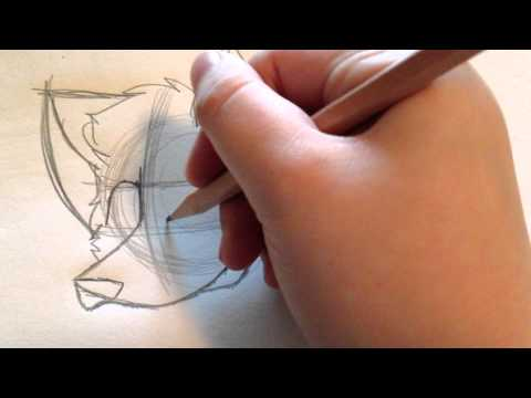 How To Draw A Cartoon Wolf (revised)