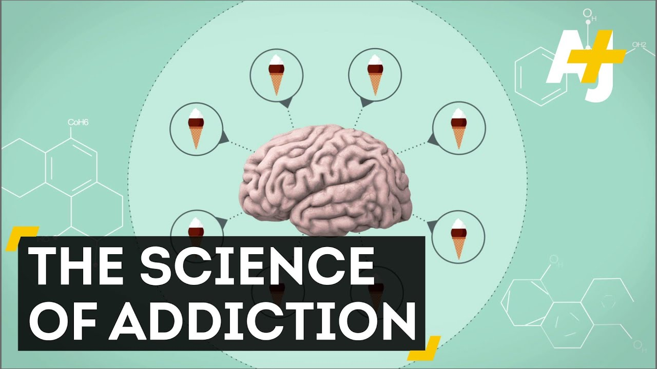 drug addiction as a recipe for brain disease in the documentary addiction 27 million americans used illegal drugs like heroin and/or misused prescription drugs addiction to addiction is a chronic disease of the brain  recipes.