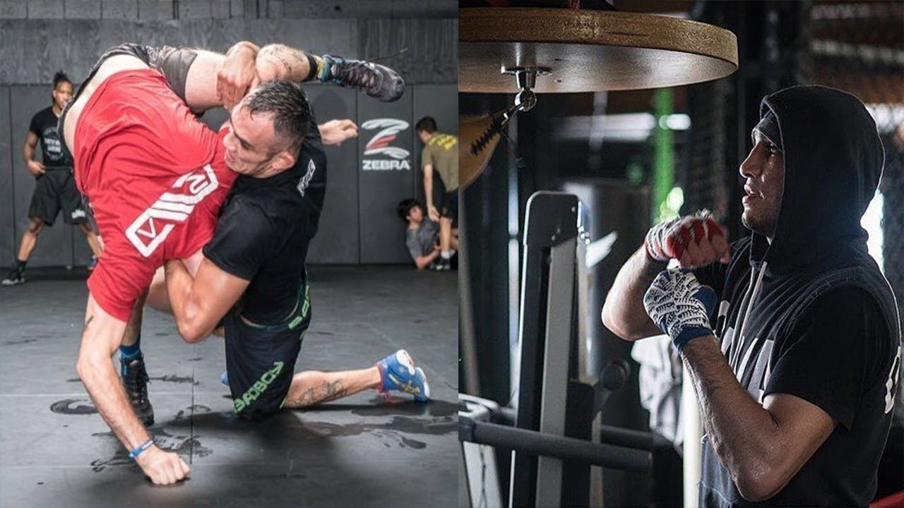 Самый техничный боец UFC - Тони Фергюсон
