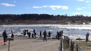 Ледоход на Оке. Прорыв льда из-за моста. 7 апреля 2018.