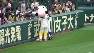 2010年5月26日、阪神-西武戦試合前の一コマ。埼玉西武ライオンズのマス...