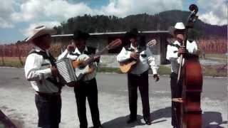 Grupo Norteño, Muchacho Alegre