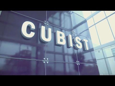 Cubist Fellows