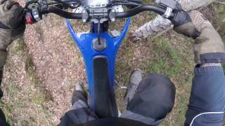 Yamaha out for a strol in the woods thumbnail