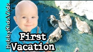 HobbyDino's First Vacation! Baby Ducks Plop + HobbyDino Play HobbyKidsVids