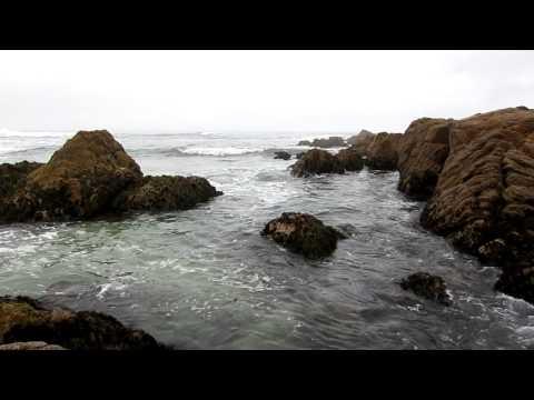 Asilomar Beach, California, October 2012