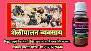 Shelipalan - Goat Farming - चारा व्यवस्थापन -sheli Palan - शेळी पालन