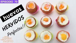 Como hacer huevos hervidos perfectos   tiempo de coccion a la coque, blando y duro