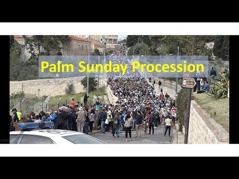 RS Tours: Palm Sunday walk down Mount of Olives