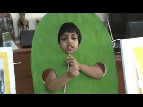 Samyuktha Fancy Dress 2013 - YouTube