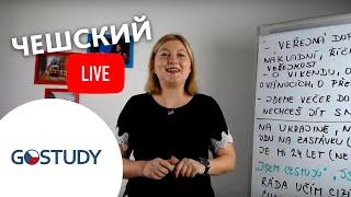 Марафон чешского языка. Объявление результатов